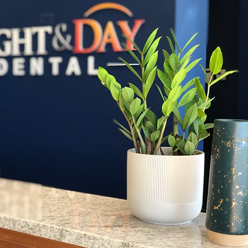 Plant on desk at a Night & Day Dental office.